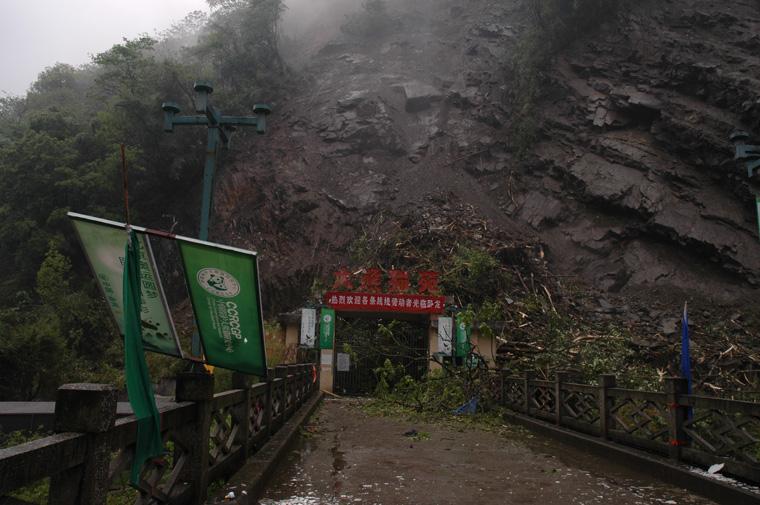 大熊猫圈养设施于2008年的大地震中受到严重破坏